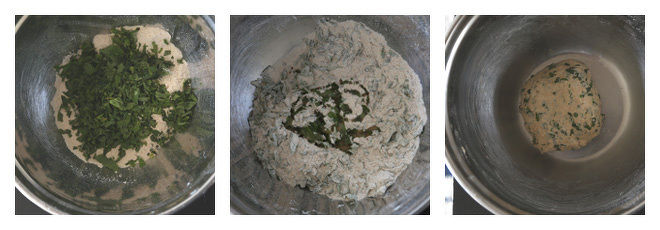 Mint Paratha Recipe-Step-1