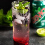 Blackberry Ginger Mojito