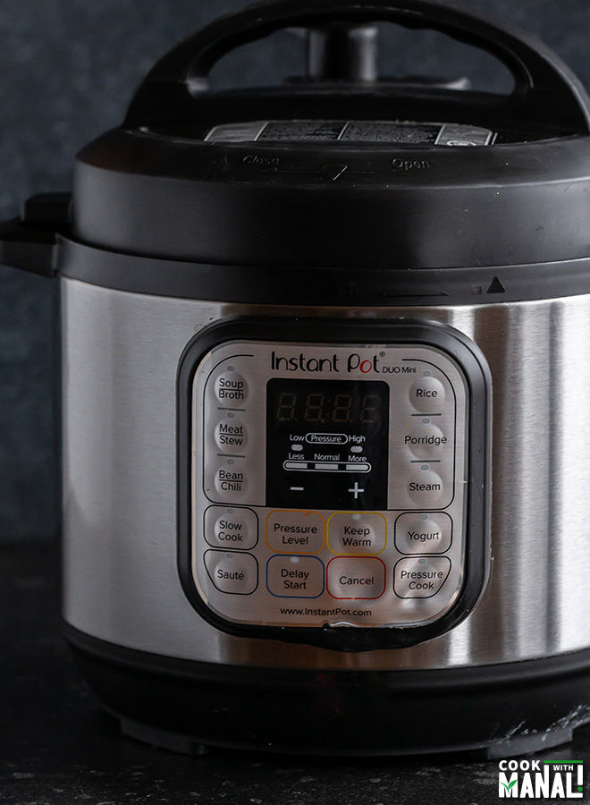 picture of instant pot mini