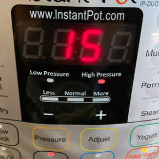 instant pot display timer displaying 15