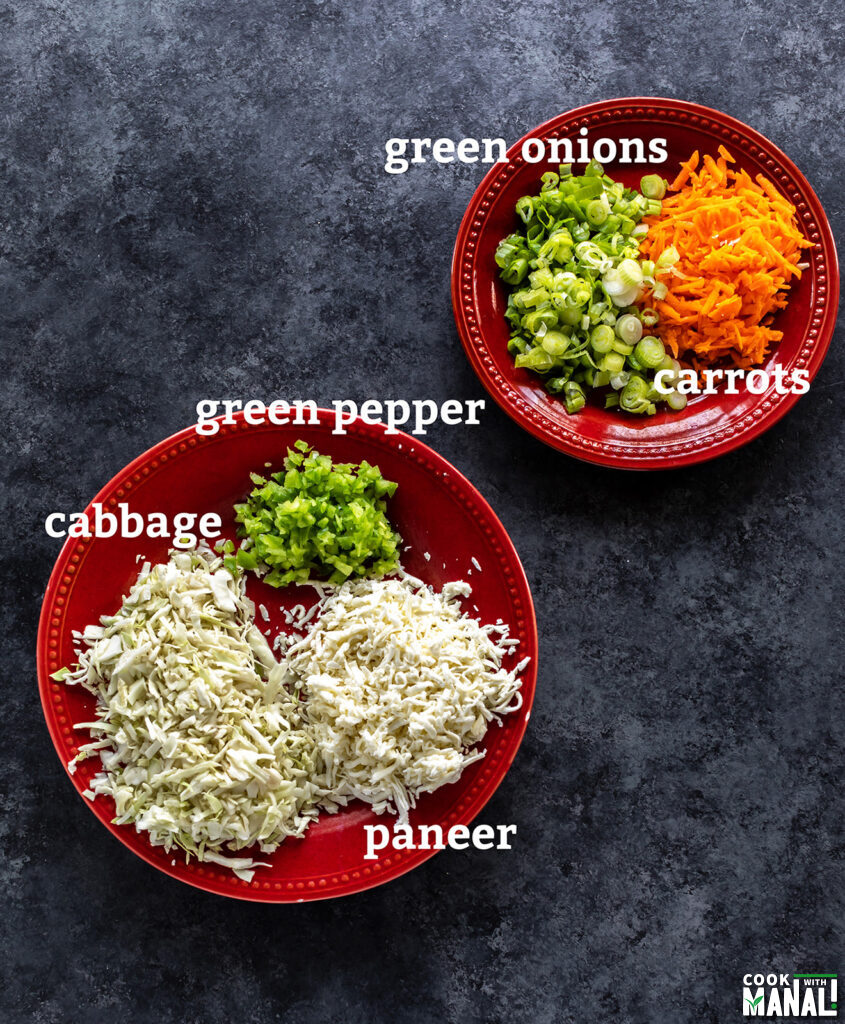 chopped vegetables like cabbage, pepper placed on round red plates